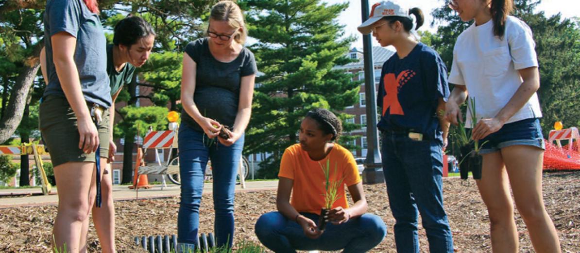 Students installing a rain garden. Photo by Kate Gardiner