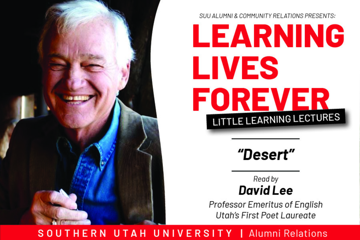 David Lee Litle Learning Lecture