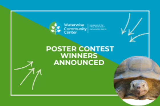 Poster Contest Winners