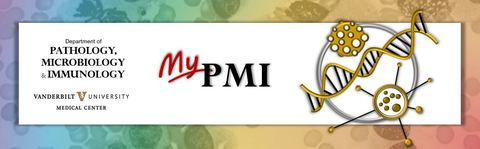 MyPMI
