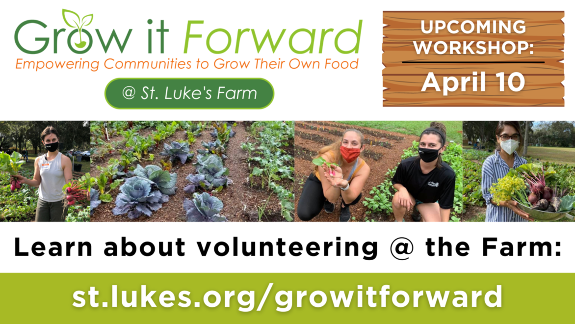 Grow it forward webpage link