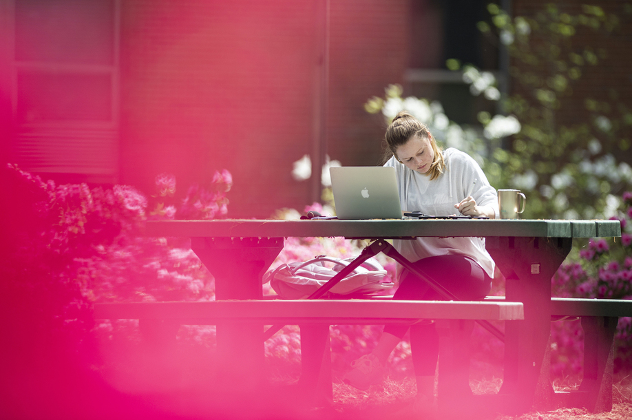 Student studying on picnic table