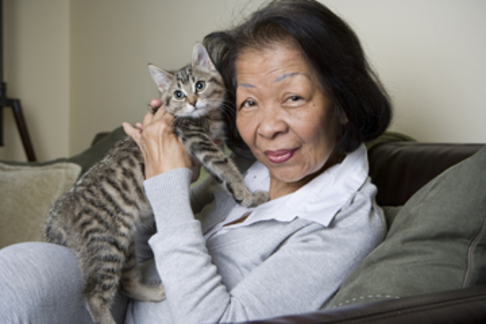 An older woman sitting on the couch holding a gray tabby kitten.