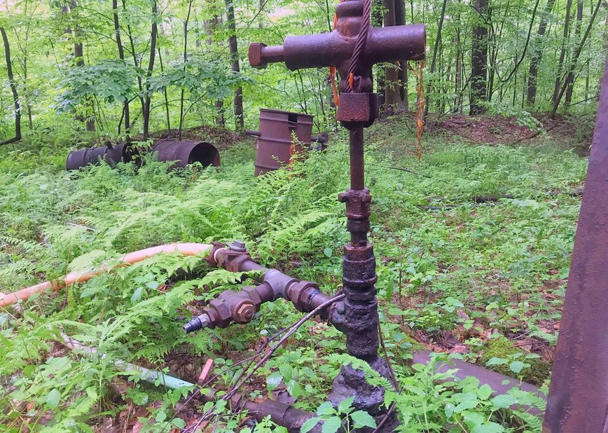 Outside, forest, plants, metal, pipes, structure