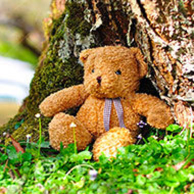 teddy bear propped up against the base of a tree