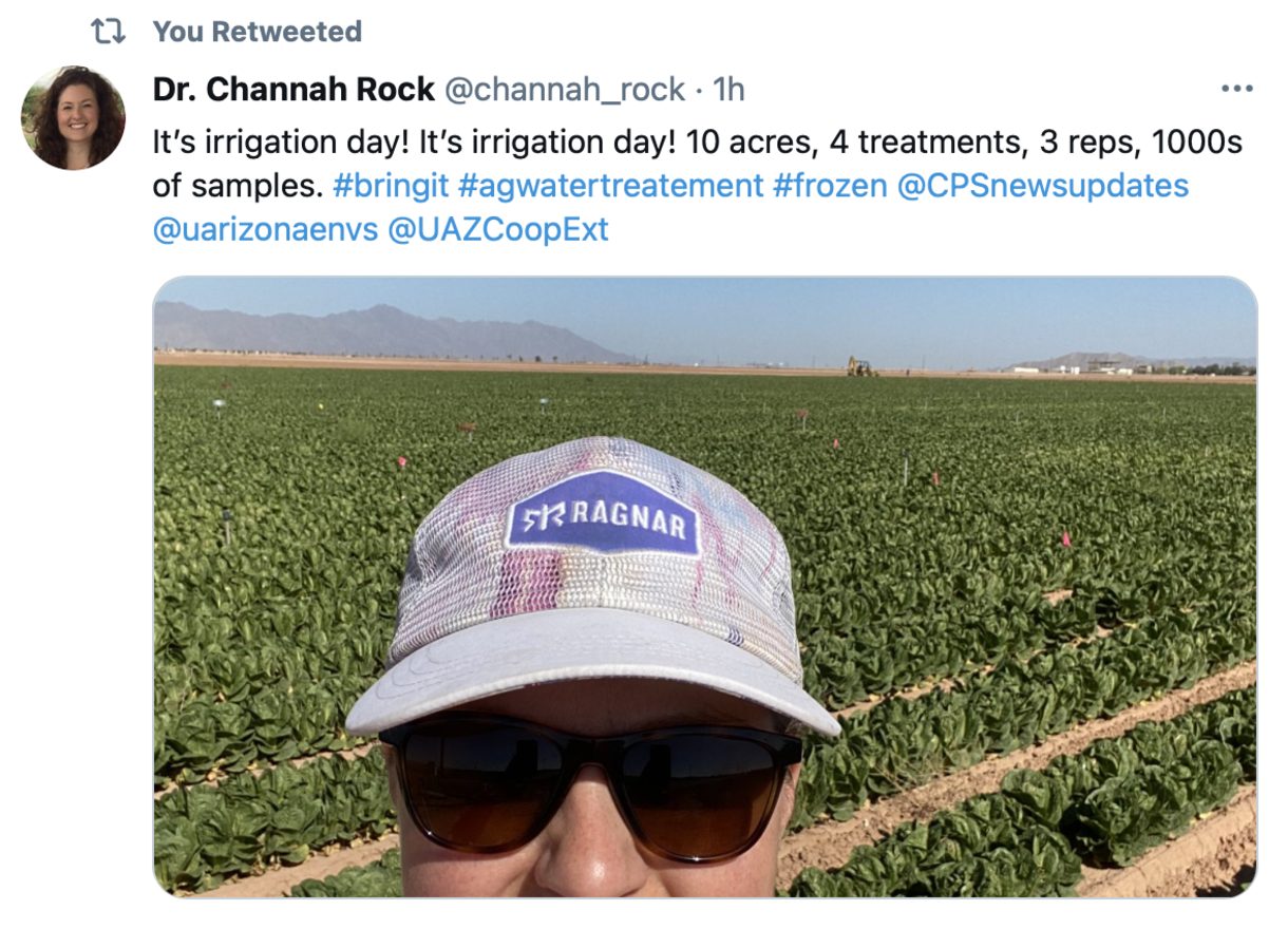 Rock and Irrigation