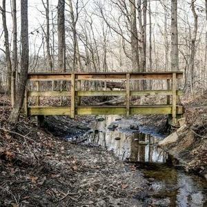 An Indiana wetland