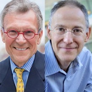 Health Insurance Public Option Unlikely in Biden Era, Penn LDI Conference Told