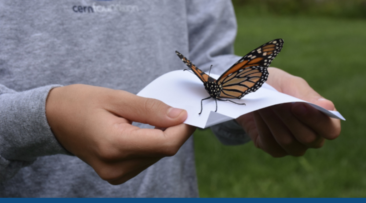 Image. Participants at Ependymoma Awareness Day hold beautiful butterflies and are about to release them into the air.