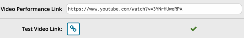 Video performance link text box with link filled in, a green check mark shows that the video is in and the link works.