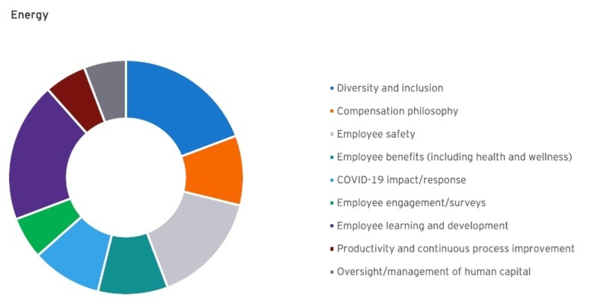 Compensation in Context Newsletter - Executive Pay