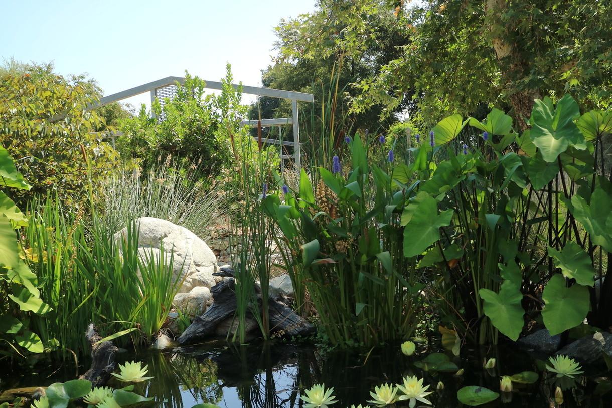 Garden Reopening
