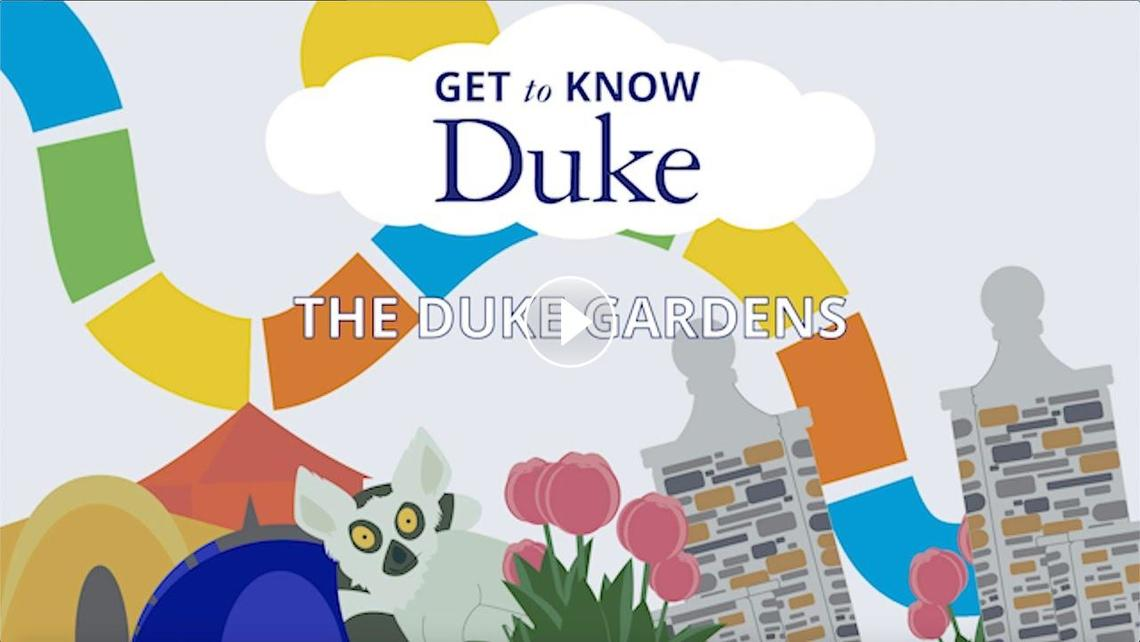 """Youtube video for the """"Get to Know Duke"""" series featuring Duke Gardens"""