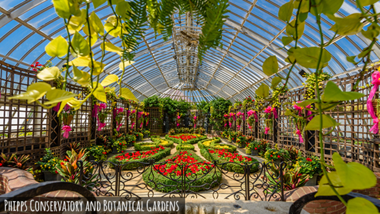 A colorful and decorative display of flowers and plants at the Phipps Conservatory greenhouse
