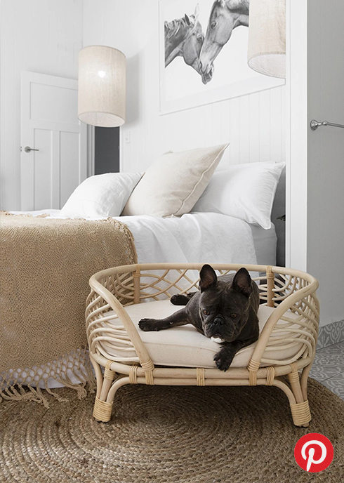 A French bulldog in a dog bed