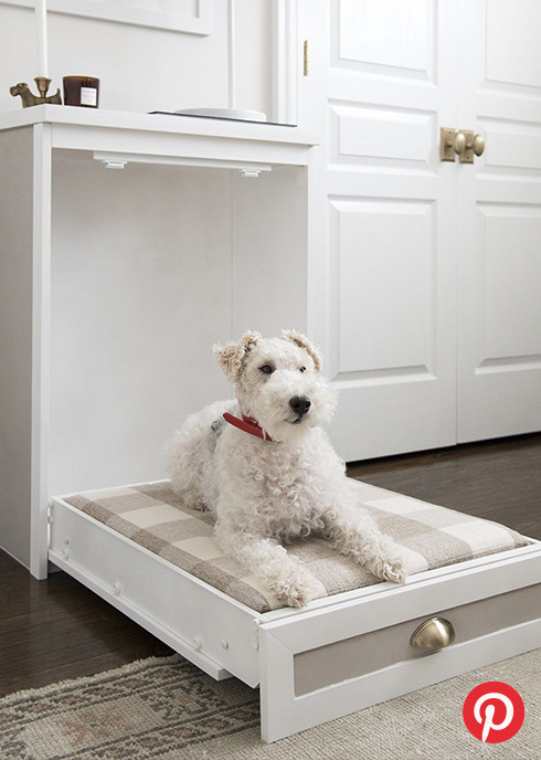 A dog on a small pet bed