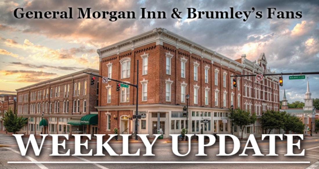 Weekly Update header