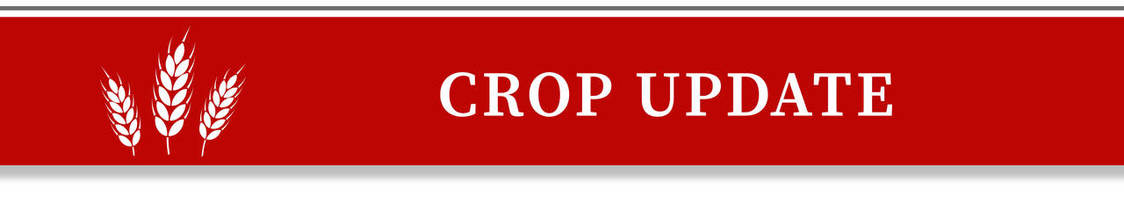 crop update