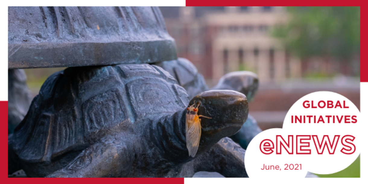 Closeup of the turtles at sundial, with a cicada perched on one's head