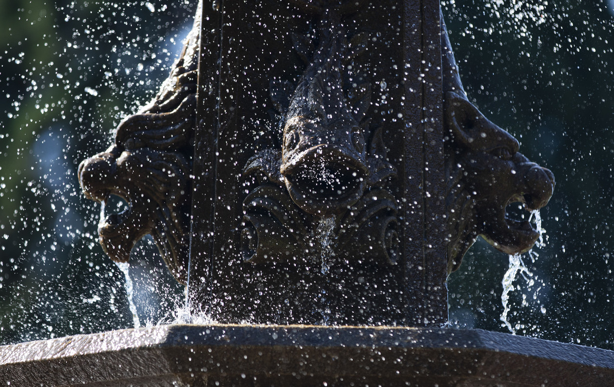 The spray off the fountain in Jones Circle