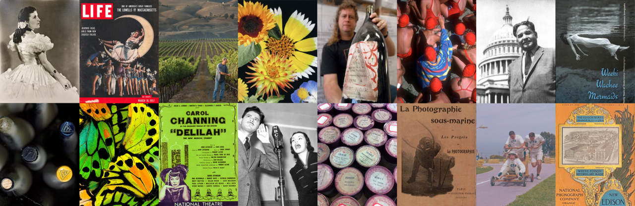 Collage of items in the Special Research Collection