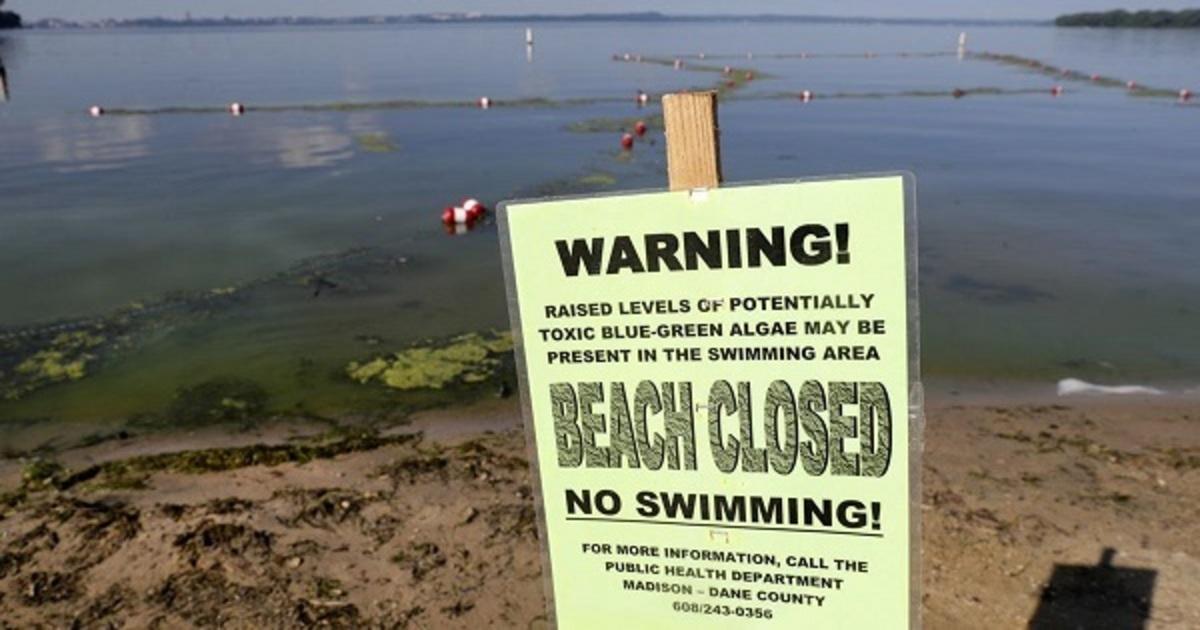 HABs Beach Warning, Madison WI