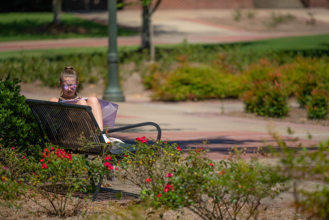 Student sitting on bench reading on a sunny day