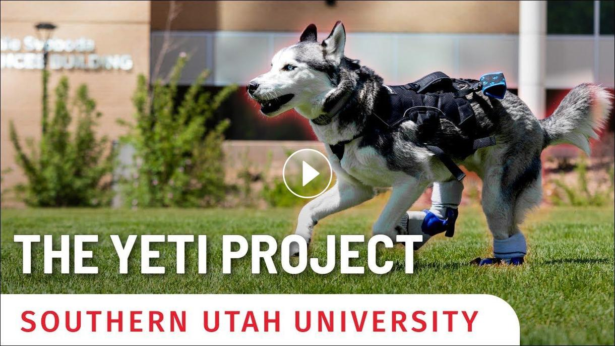 The Yeti Project