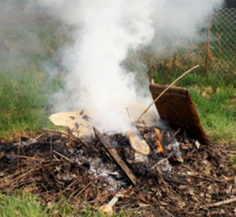 Burning vegetation outside.