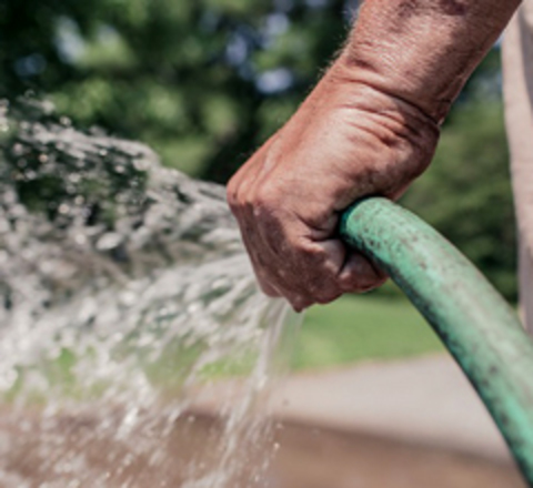 Watering with a hose at home.
