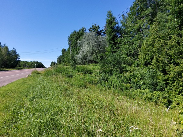 Bayfield lot for sale