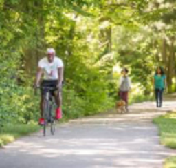 Hikers and bikers traversing verdant trails in York County