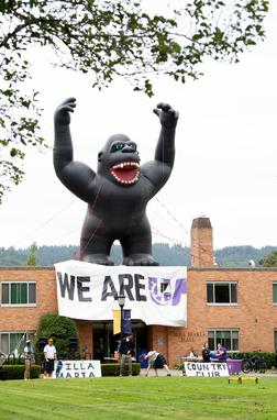 Villa Maria Inflatable Gorilla UP