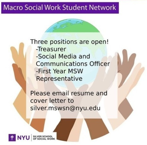 MSWSN Call for Leaders