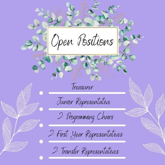 Open Positions: Junior, Junior Representative, 2 Programming Chairs, 2 First Year Representatives, 2 Transfer Representatives