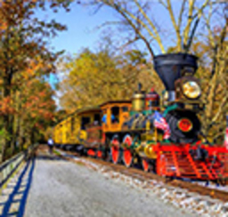 A colofully painted steam engine chuggin through the beautiful fall foliage along the railroad