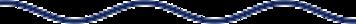 Wavy blue divider